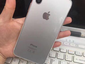 iPhone 8 sample model back