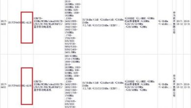Huawei V10 model number