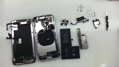 Photo of iPhone X first teardown shows its (L-shaped) dual battery