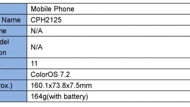Photo of Oppo Reno4 Lite Spotted On FCC Certification: Minimal Specifications Leaked