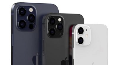 iPhone 12 Series Camera