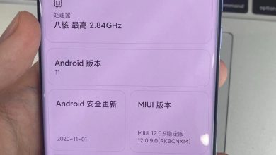Photo of Xiaomi Mi 11 Live Images Leaked With Specification