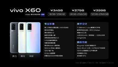 Vivo X60 Standard Version Specs
